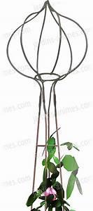 Support Pour Rosier Grimpant : tuteur rosier colonne et sa boule tulipe tuteurs rosiers ~ Premium-room.com Idées de Décoration