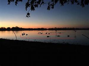 Beginner U2019s Guide To Duck Hunting  Top Tips For
