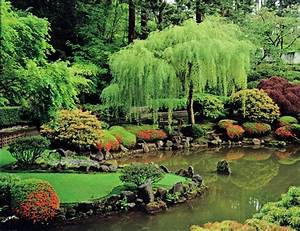Japanese Garden Pond Beautiful, lovely things Pinterest