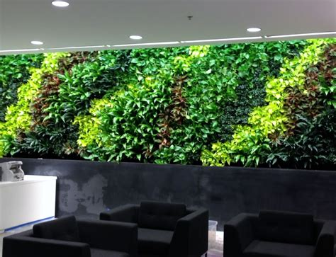 Edible Vertical Garden by Large Living Wall Installation Commercial Services By
