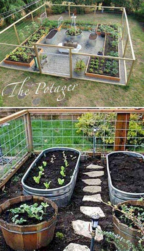 pin  shelly  gardening vegetable garden design