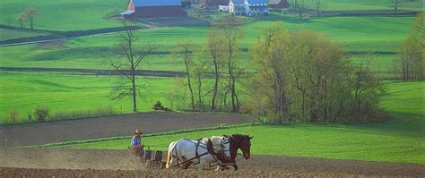 amish country attractions berlin stores gift shops