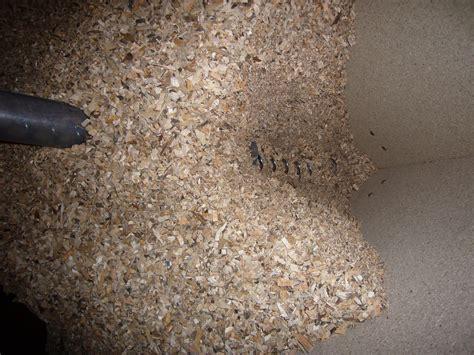 förderschnecke selber bauen pellets f 246 rderschnecke selber bauen pellet silo zum selber bauen vol 1 energiesparen leicht