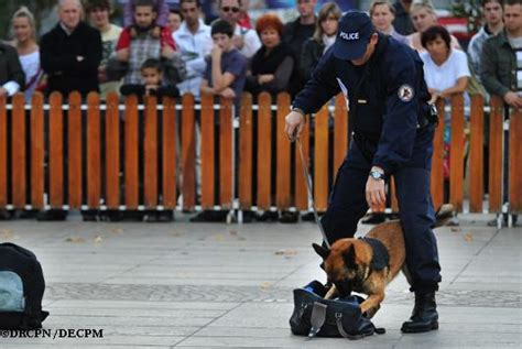 Brigade Canine / Fiches Métiers / Images