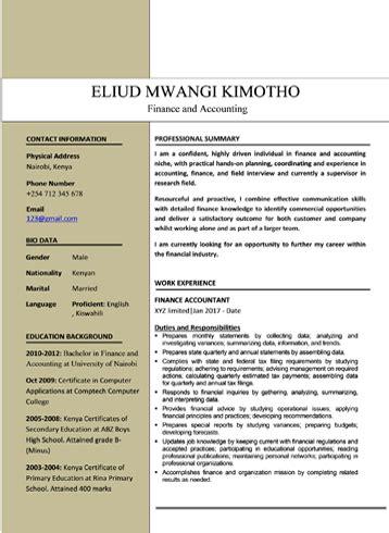 cv sles pdf and microsoft word format