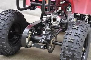 49cc Kids Farm Ag Junior Quad Bike Mini Atv For Sale