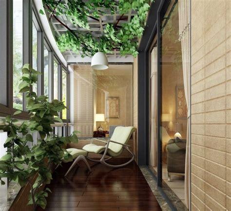 cool ideas  balcony plants practical advice