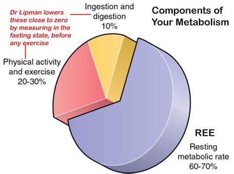 quiz     slow metabolism drlipman