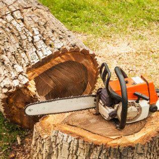 tree services tree removal huntsville al melrose