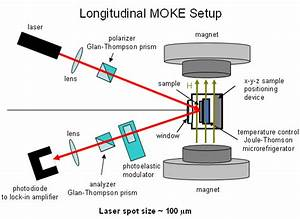 Tsui Group  Moke