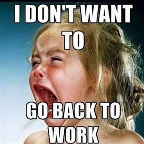 Back To Work Meme - labor day memes funny photos jokes images