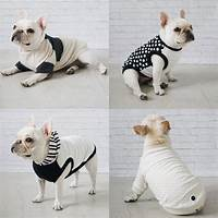 french bulldog accessories Best 25+ French bulldog clothes ideas on Pinterest ...
