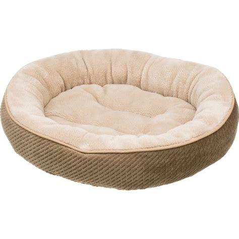 cat beds petco petco textured cat bed in sand my pet dreamboard