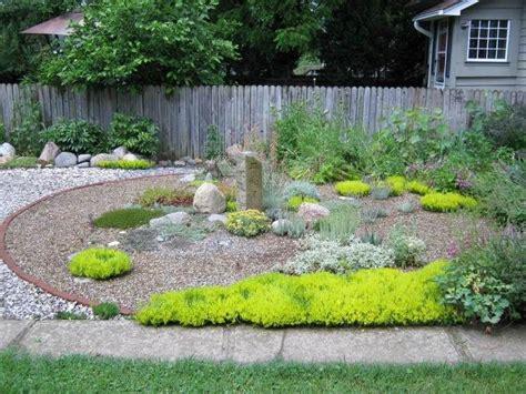 pflanzen für kiesbeet pflanzen kiesbeet japanischer steingarten bodendecker