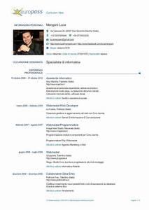 Luca Mengoni Curriculum Vitae Europass
