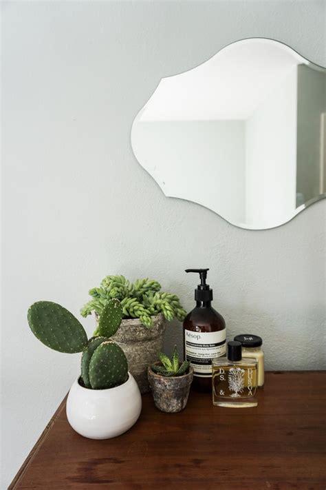 ideas  bathroom plants  pinterest plants