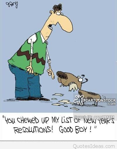 year  funny resolutions quotes cartoons