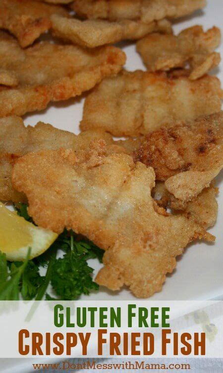 gluten free fish fry crispy gluten free fried fish recipe gluten fried fish recipes and met