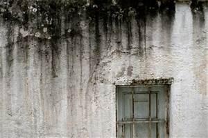 Feuchtigkeit In Der Wand : feuchtigkeit in der wand was tun ~ Sanjose-hotels-ca.com Haus und Dekorationen
