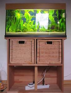 Aquarium Unterschrank Ikea : neues aquarium aber kein unterschrank aquascaping aquariengestaltung aquascaping ~ Watch28wear.com Haus und Dekorationen