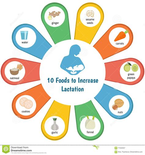 Image Gallery Lactation Foods