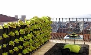 wohnideen lebende farbe dachterrasse und balkon bepflanzen freshouse