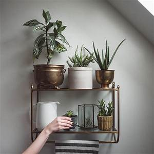 25 Indoor Garden Ideas - Your No 1 source of Architecture