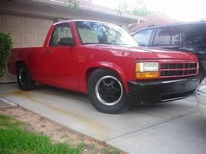 1995kotasport 1995 Dodge Dakota Regular Cab  U0026 Chassis