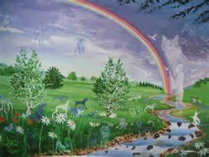 pet cat animal rainbow bridge american print