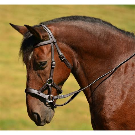 bridle bitless side leather english horse pull hackamore sidepull saddle brown genuine natural bridles noseband tack western reins discipline flower