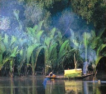 bangladesh world heritage mangrove sundarbans