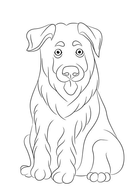 Kleurplaat Tekenen by Kleurplaat Hond 64 Gratis Allerleukste Honden Kleurplaten