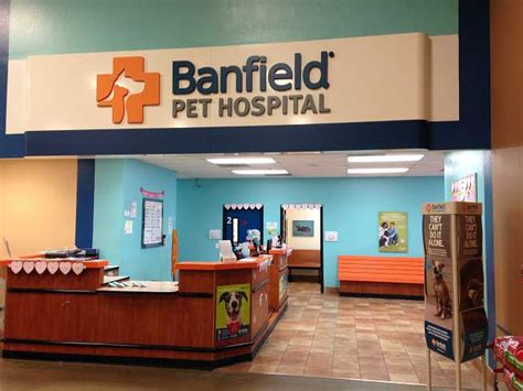 Banfield Pet Hospital® Location At 2550 Art Line Vs Pulmonary Artery Catheter Easy Welding Wire And Soul Maui Huntington Beach League & Nails Animal Kindergarten Wall Australia