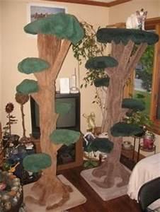 Kratzbaum Echter Baum : kratzbaum selber bauen 67 ideen und bauanleitungen garten pinterest baum ~ Markanthonyermac.com Haus und Dekorationen