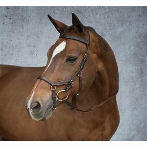 Micklem Competition Bridle | Dover Saddlery