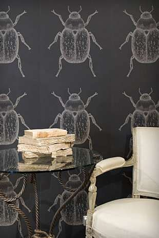 stylish insect interiors beetle wallpaper