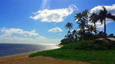 hawaii island tropical  photo  pixabay