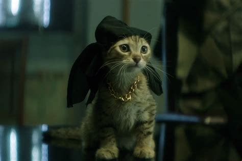 'keanu' Redband Trailer Key And Peele Put The Cutest Cat