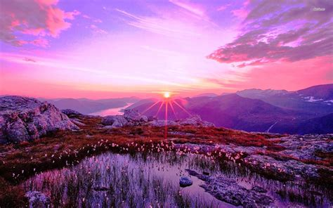 Purple Mountain Wallpapers - Wallpaper Cave