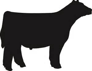 Show Cattle Steer Silhouette Clip Art