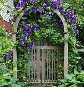 Ideas for a French Country Garden - Windowbox com Blog