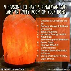 Benefits Of Rock Salt Lamps by 25 Best Images About Himalayan Salt Lamp On Pinterest