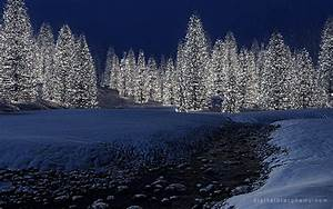 Digital Blasphemy 3D Wallpaper: Snowy Creek Christmas ...