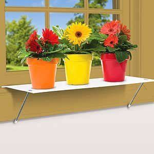 Window Sill Plant Shelf by Window Plants Plant Shelves And Plants On