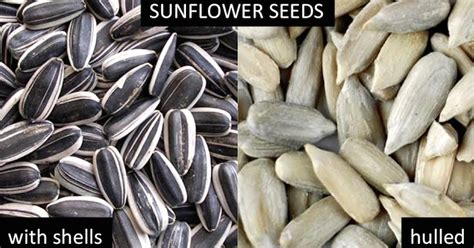 add these seeds as a post workout snack for muscle repair