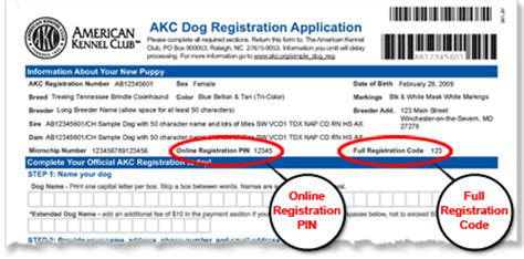 Number Full Form by American Kennel Club Online Dog Registration