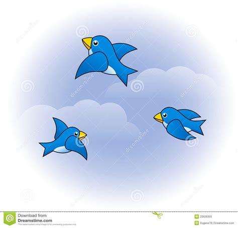 funny birds stock  image