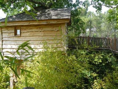 chambre d hotes dans les arbres des chambres d hôtes perchées dans les arbres