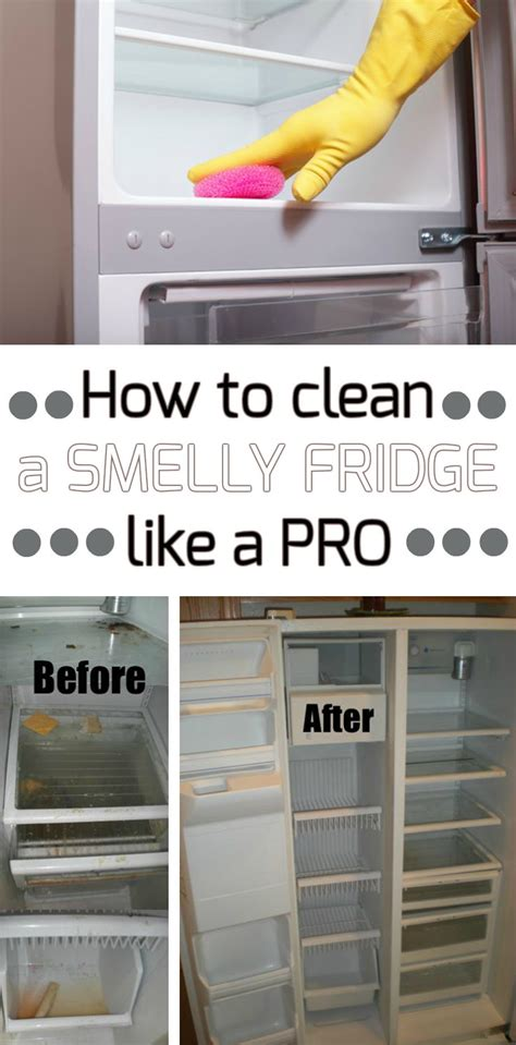 clean  smelly fridge   pro cleaning ideascom