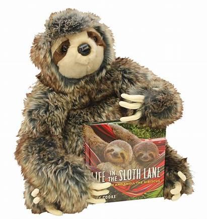 Sloth Lane Children Bear Toys Teddy